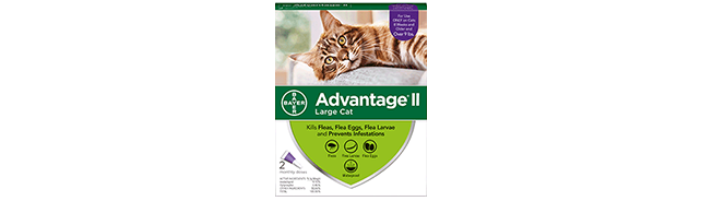 Advantage® II for Cats