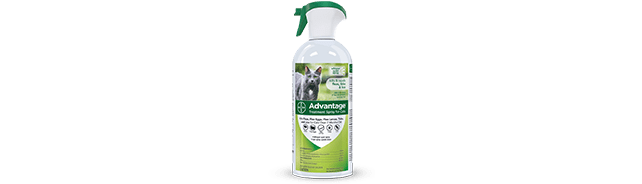 Advantage® Treatment Spray for Cats
