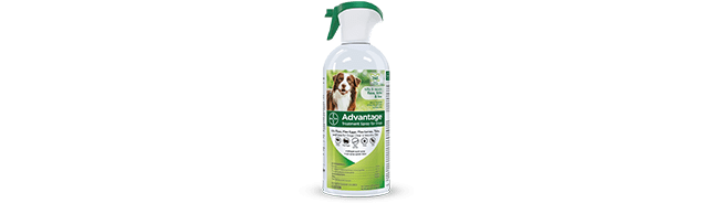 Advantage® Treatment Spray for Dogs
