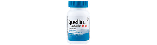 quellin® (carprofen) Soft Chews