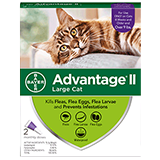Advantage II for Large Cat packaging