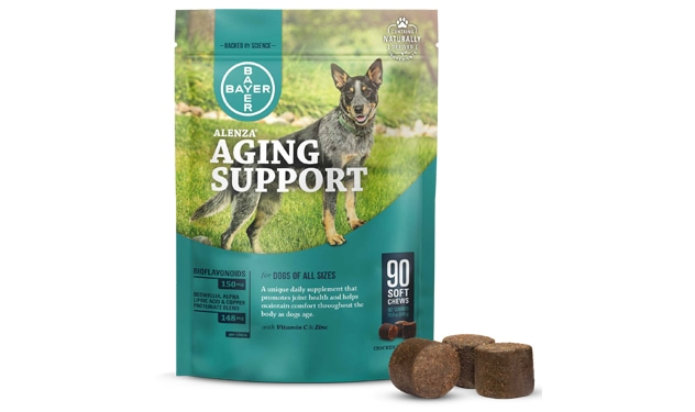 Alenza Aging Support for Dogs package with soft chews