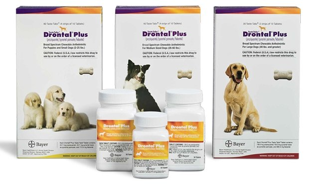Drontal Plus for Dogs package with bone tablet