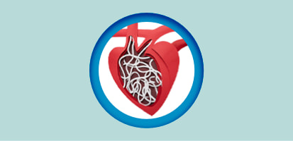 An icon of heartworms in a dog's heart.