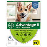 Advantage II for Extra Large Dog packaging