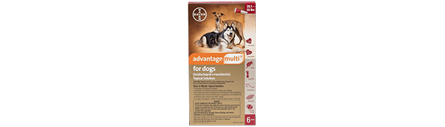Advantage Multi® for Dogs (imidacloprid + moxidectin)