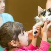 Two young girls petting a cat inside a shelter.